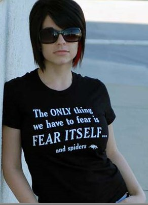 the only thing to fear is fear itself and spiders tshirt The Only Thing We Have to Fear is Fear Itself and Spiders T Shirt