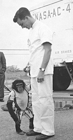 ham first astronaut chimp Monkey Astronaut Cold War Vet T Shirt