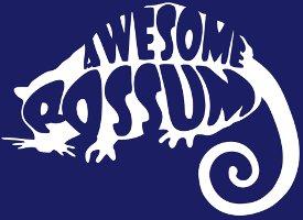 awesome possum tshirt Awesome Possum T Shirt