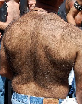 hairy back Funny T Shirts for Men