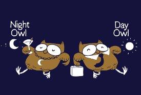 night owl day owl t shirt Night Owl, Day Owl T Shirt