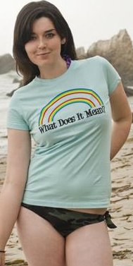 what does it all mean double rainbow t shirt What Does It Mean Double Rainbow T Shirt