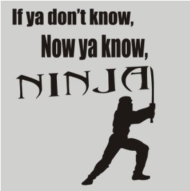 if ya didnt know now ya know ninjas t shirt Best Funny Ninja Shirts on the Web For Your Stealthy Dangerous Pleasure