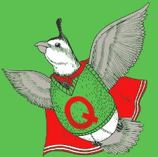 quailman quail t shirt Quailman Quail T Shirt