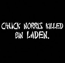 chuck norris killed bin laden t shirt Funny Osama Bin Laden T Shirts For Your Morbid and Vindictive Pleasure