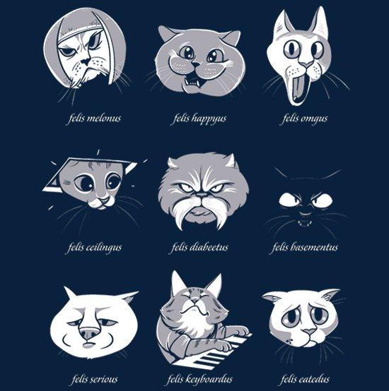 lolcat taxonomy t shirt LOLCat Taxonomy T Shirt