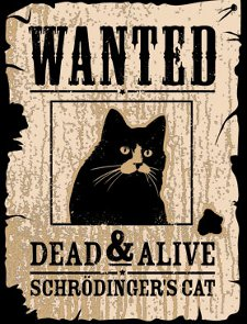 wanted dead and alive schrodingers cat t shirt Wanted Dead & Alive Schrodingers Cat T Shirt