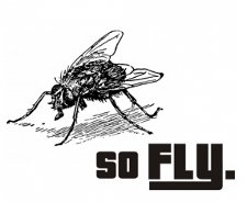 so fly t shirt So Fly T Shirt