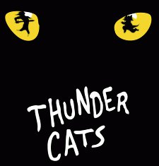 thunder cats t shirt Thunder Cats T Shirt