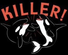 killer whale t shirt Killer Whales Killer T Shirt