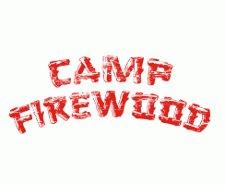 camp firewood t shirt Wet Hot American Summer Camp Firewood T Shirt from Busted Tees