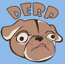 derp dog t shirt Derp Dog T Shirt from Snorg Tees