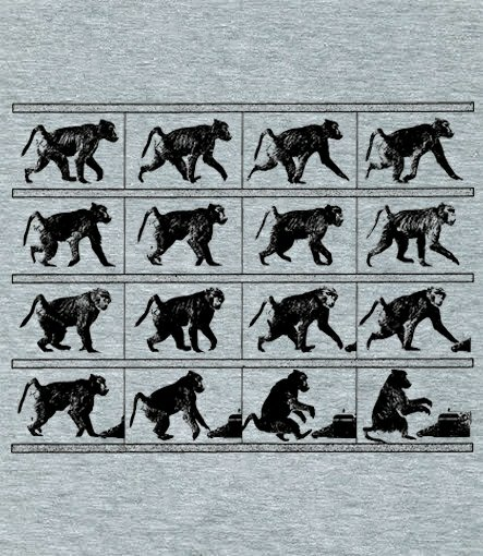 baboon in motion t shirt Baboon in Motion T Shirt