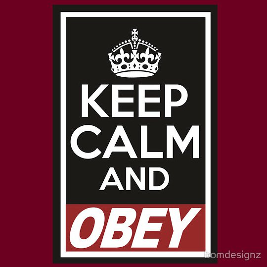 keep calm and obey t shirt Keep Calm and Obey T Shirt From Red Bubble