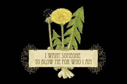 i want someone to blow me for who i am t shirt I Want Somebody to Blow Me For Who I Am T Shirt from T Shirt Hell