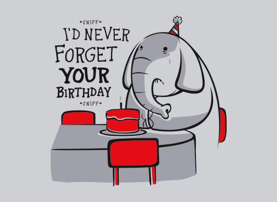 id never forget your birthday t shirt Elephant Id Never Forget Your Birthday T Shirt