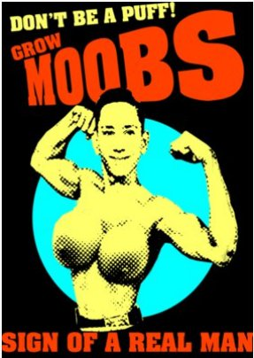 grow moobs t shirt Pud Tees: Shirt Shop Interview