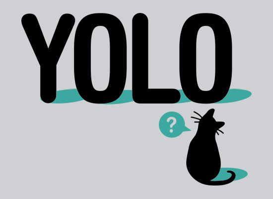 yolo cat t shirt Yolo Cat T Shirt