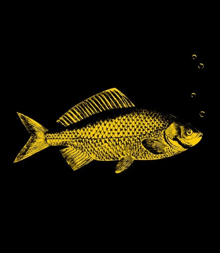 goldfish t shirt Goldfish T Shirt