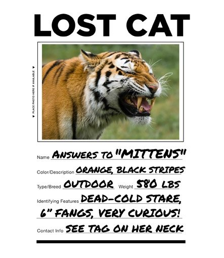 lost-cat-tiger-t-shirt