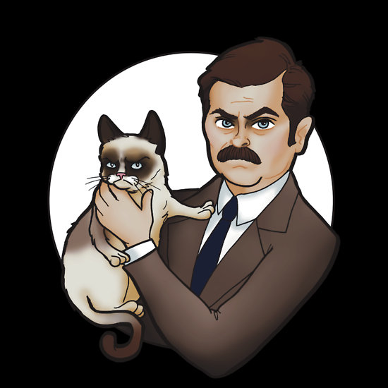 ron swanson grumpy cat t shirt Ron Swanson and Grumpy Cat T Shirt